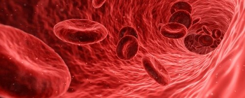 Антитромбин III в анализе крови: повышен, понижен
