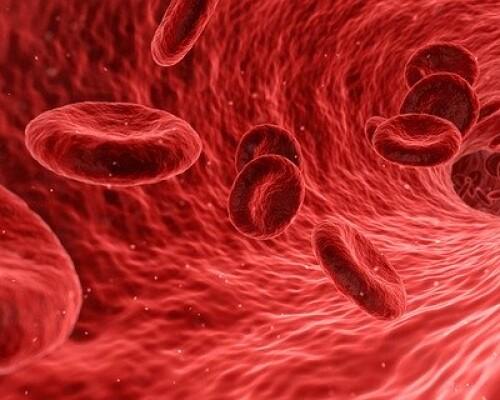 Цветовой показатель крови — что это такое, диагностика анемий