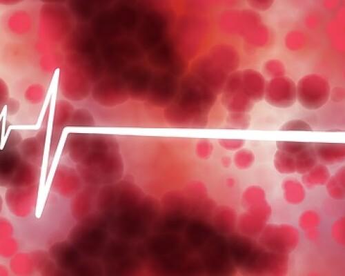 Повышены лимфоциты в крови у ребенка